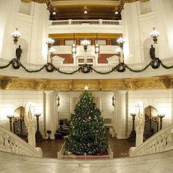 The Capitol Christmas Tree.