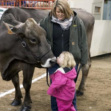 Today's Photo of the Day takes us to the Legislative Dairy Showmanship competition at the Pennsylvania Farm Show. You still have until Saturday at 5 p.m. to stop by, see the animals, try the delicious food, and support PA agriculture!
